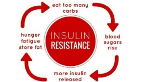 Natural Remedies For Insulin Resistance Work